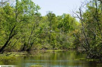 Новые места для рыбалки