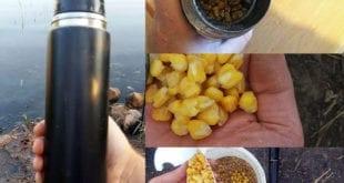 Рецепт приготовления в термосе ферментированной кукурузы для ловли карпа