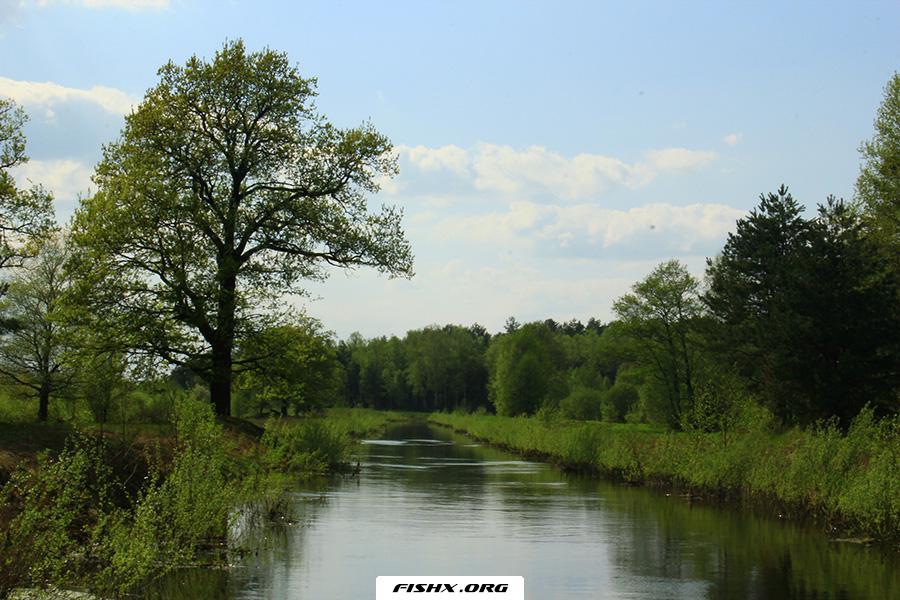 Ловля на вертушки на маленьких речках