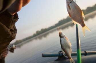 Ловля плотвы на озере на удочку