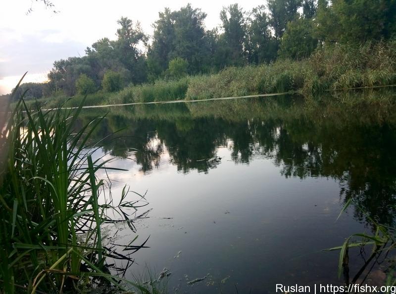 Река. Начинаем ловлю окуня