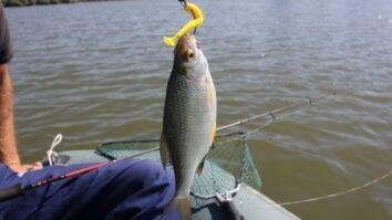 Как заточить рыболовные крючки