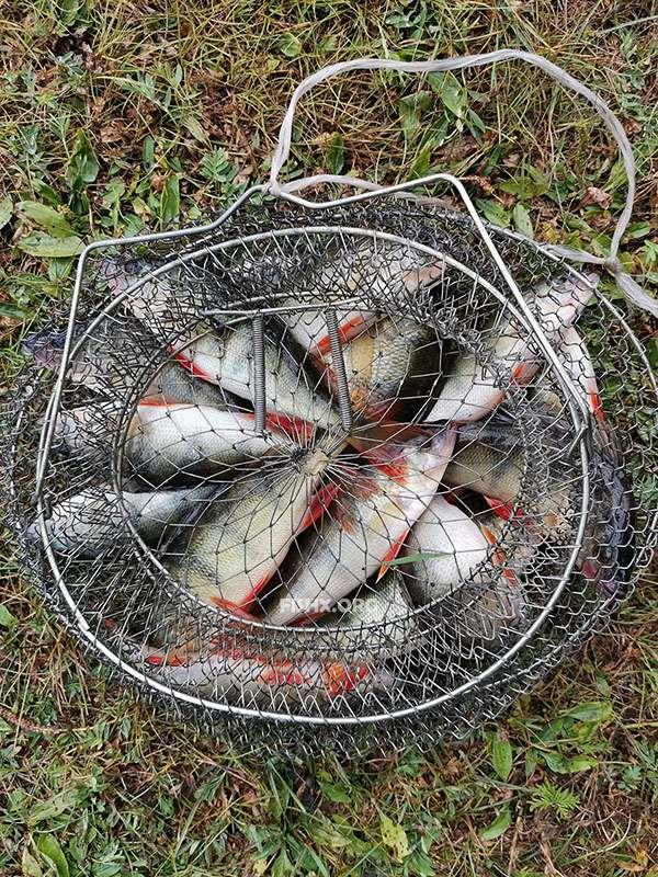 Рыбалка в проводку в мае