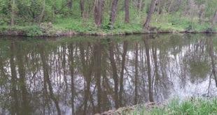 Поворот русла реки