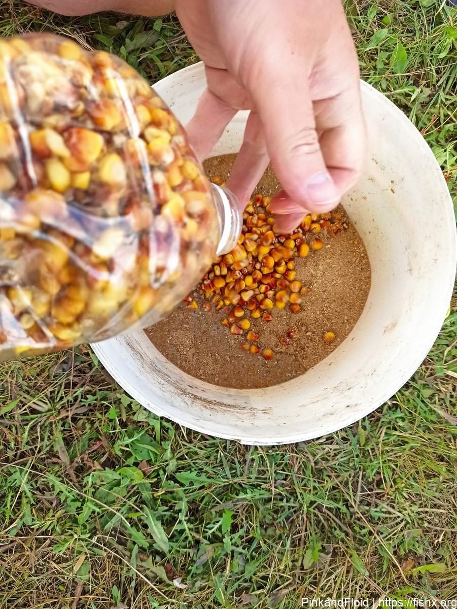 Как приготовить смесь для прикармливания карпа