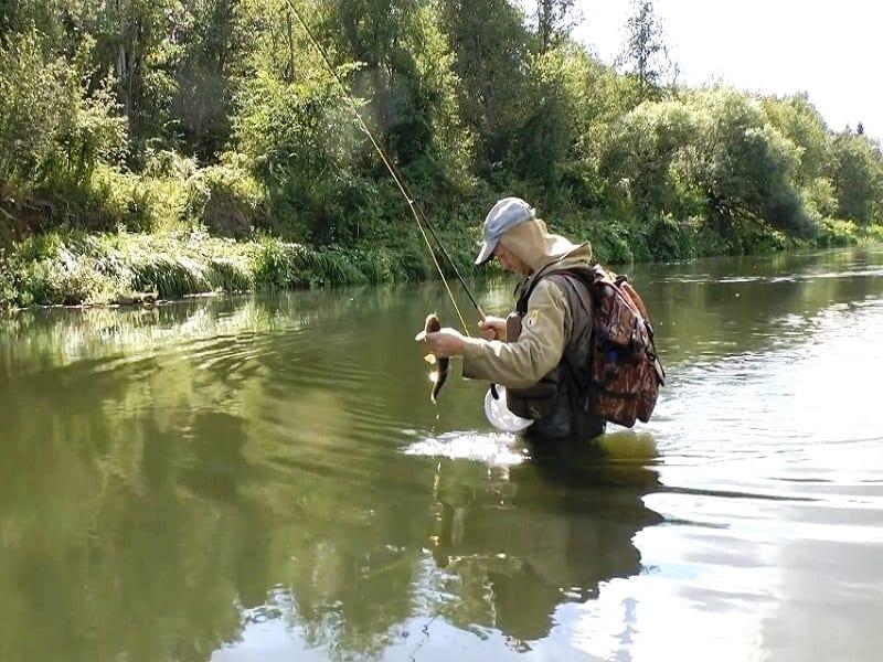 Ловля голавля нахлыстом на ручьях