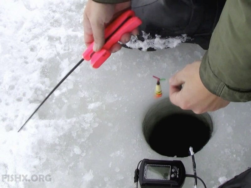 Снасть для ловли красноперки зимой