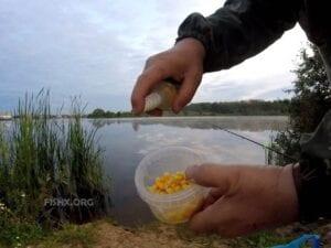 Кукуруза «Бондюэль» и аттрактанта Акара Лещ