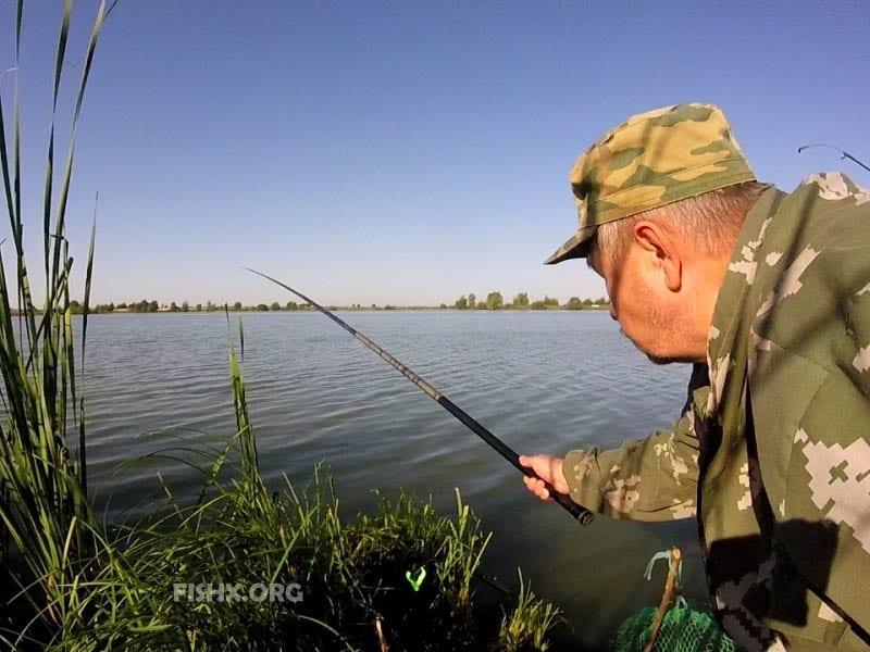 Пытался поймать живца на пруду, но как назло клюют неплохие карасики