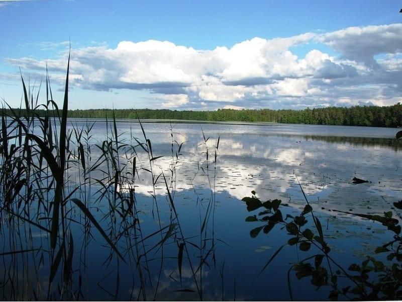 Рыбалк на озере Лужъер