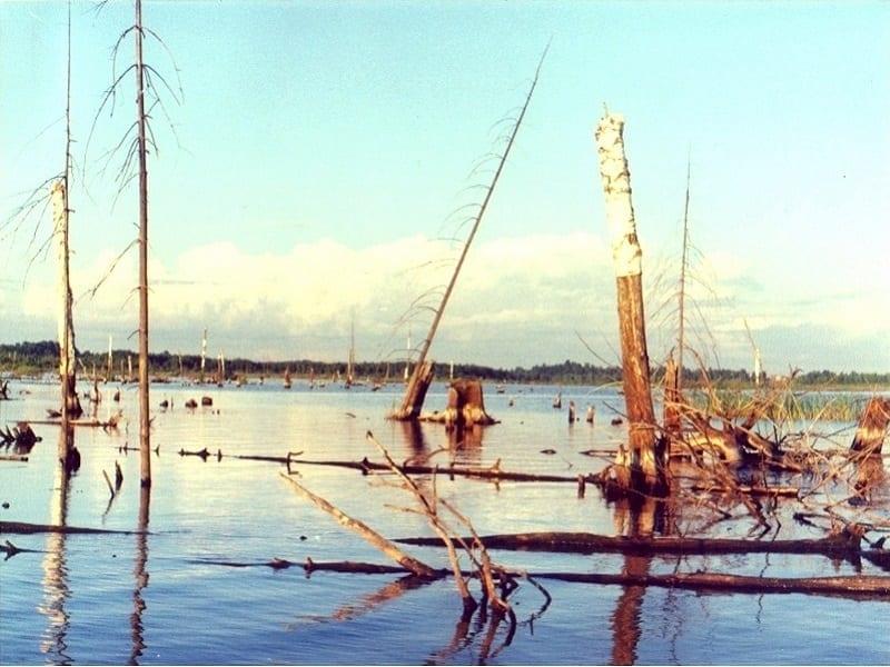 На зоне затопления