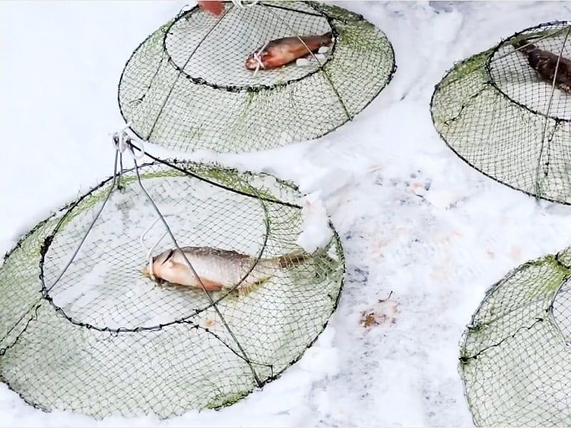 Раколовки на льду
