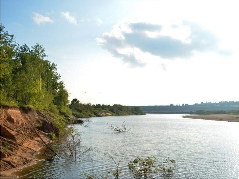 Ветлуга и Шижма у посёлка Затон