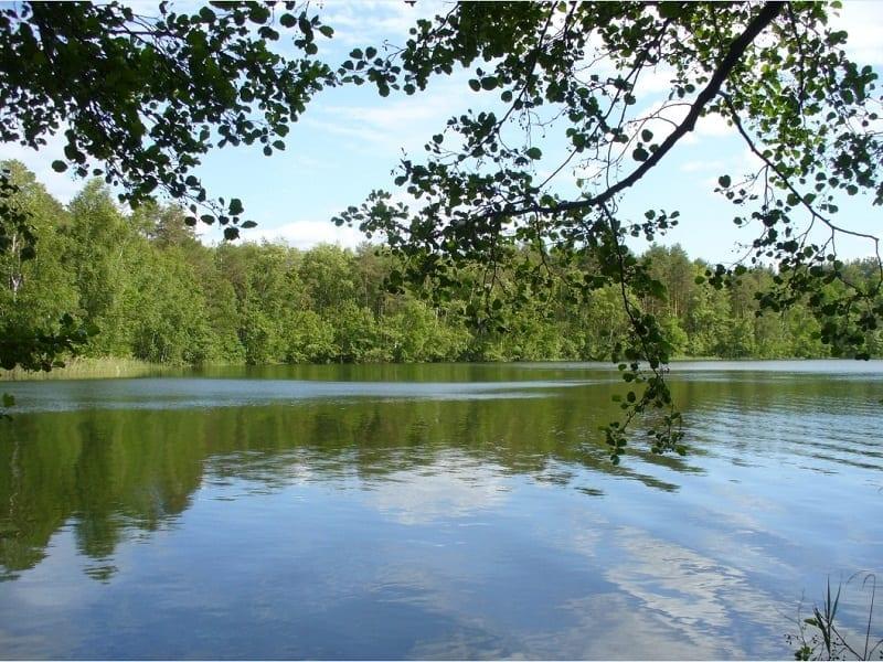 Легенды озера Шап... на дне с открытыми глазами