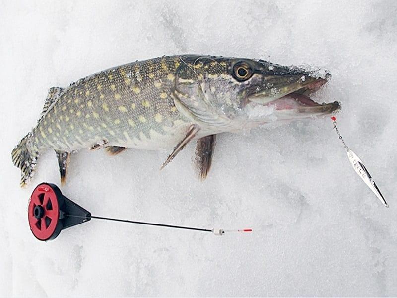 Ловля щуки на блесну со льда