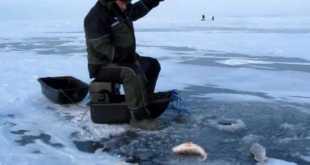 Рождение рыболова