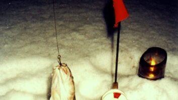 Налимы зимней Кокшаги