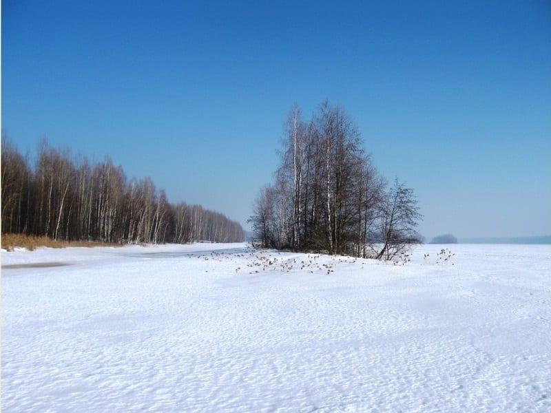 За щукой в зимнюю оттепель