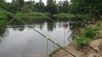 Лещ на малой реке на удочку-донку