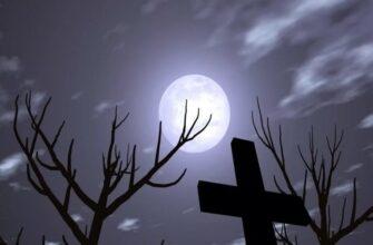 Это не рыбалка, а ночь, луна и - шаги на кладбище