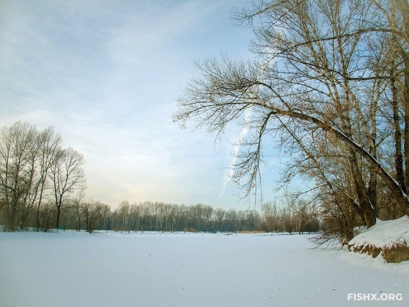 Эпизоды зимних рыбалок