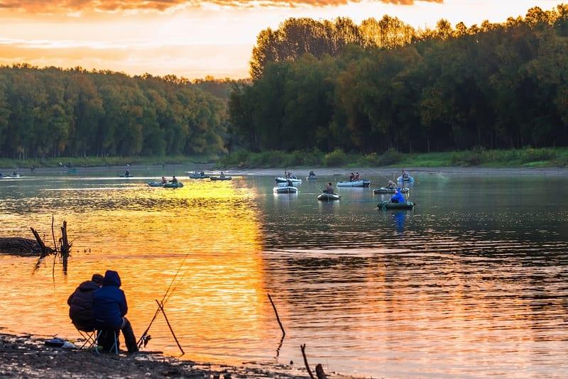 Как рыболову разобраться в мире снастей и приманок?