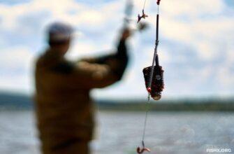 Хитрые приемы в фидерной ловле, способные повысить уловы