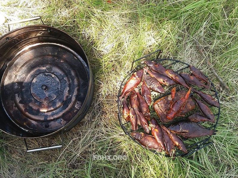 Копчение свежесловленной рыбы и рака, не отходя от водоема