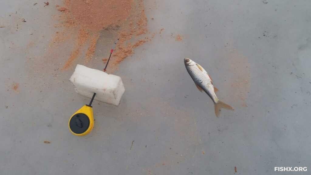Рыбалка послесильныхзаморозков