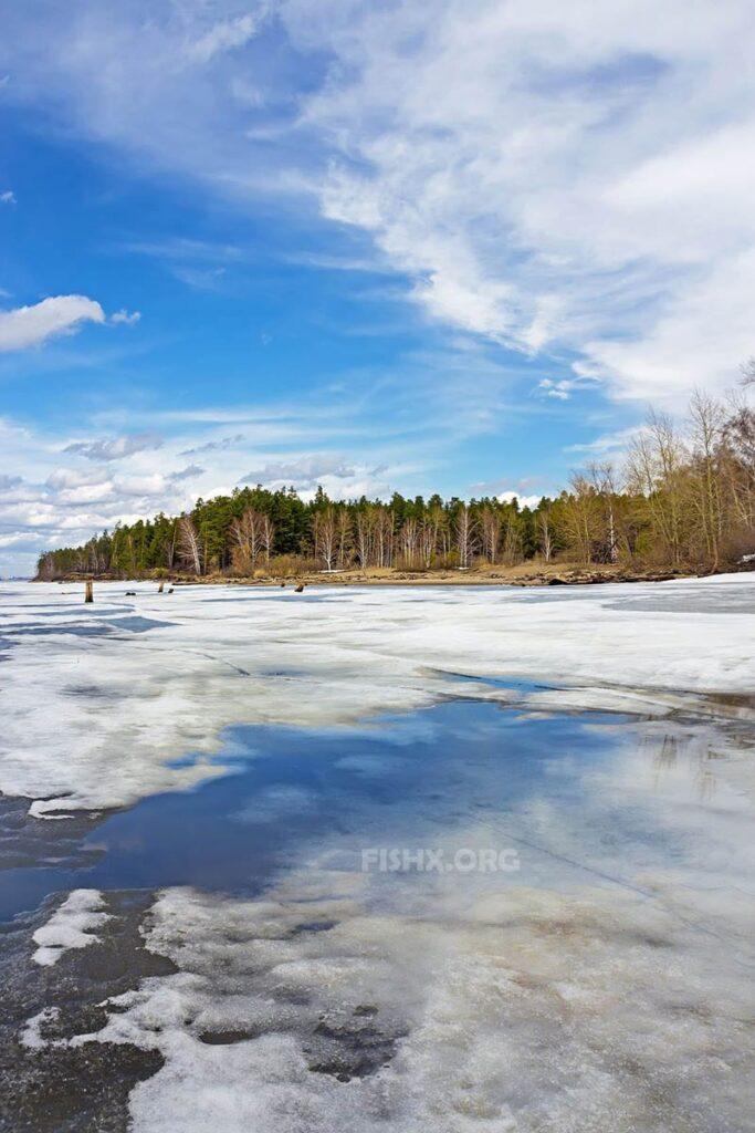 Ловля рыбы по последнему льду на реке