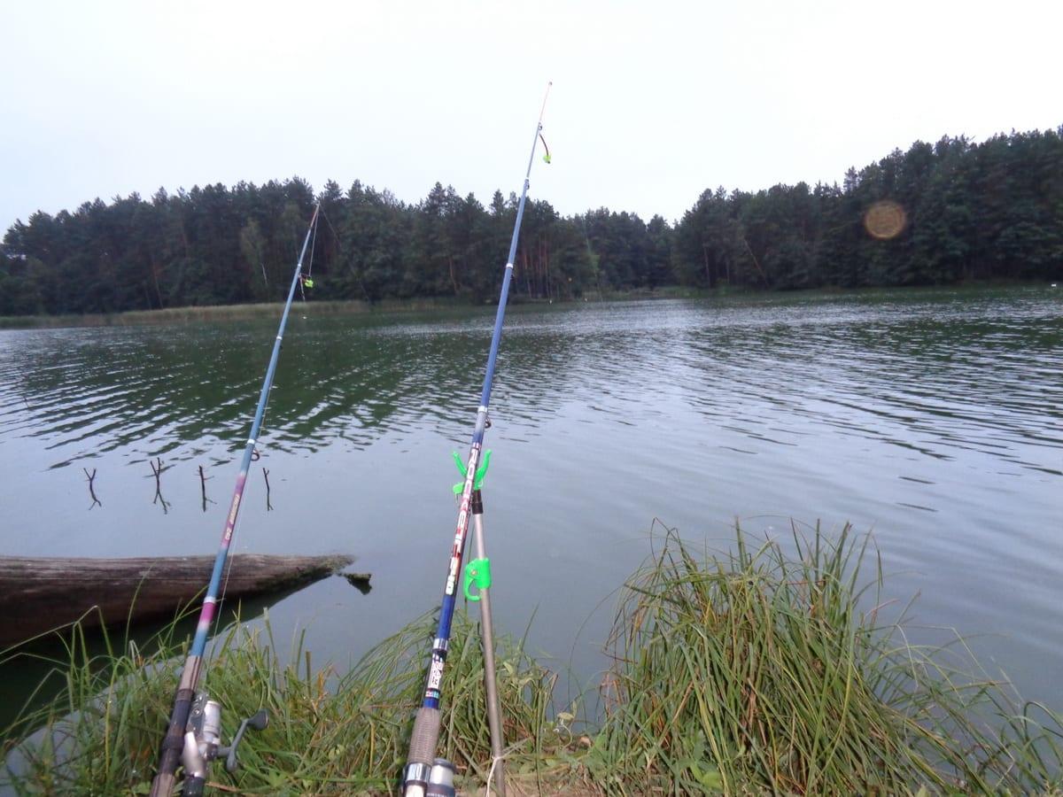 Осталось ли место классической донке в современной рыбалке?