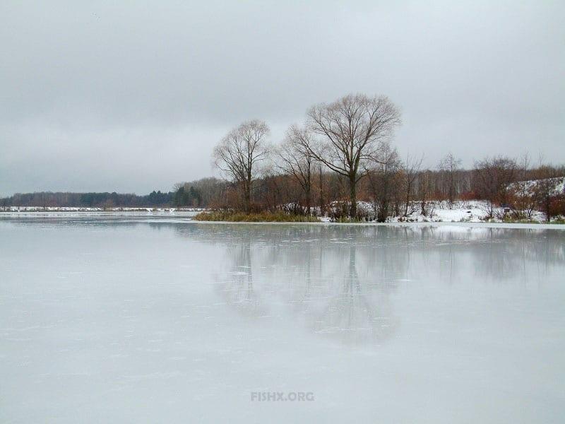 Этот дождливый первый лёд
