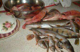 Рыба для тройной ухи