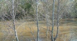 Весенний разлив