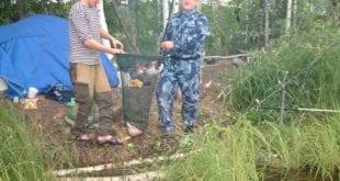 Отчёт о ловле на волжских протоках