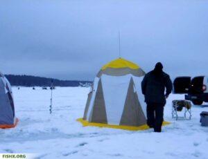 Условия ловли судака и берша зимой