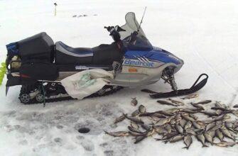 Ловля синца по льду