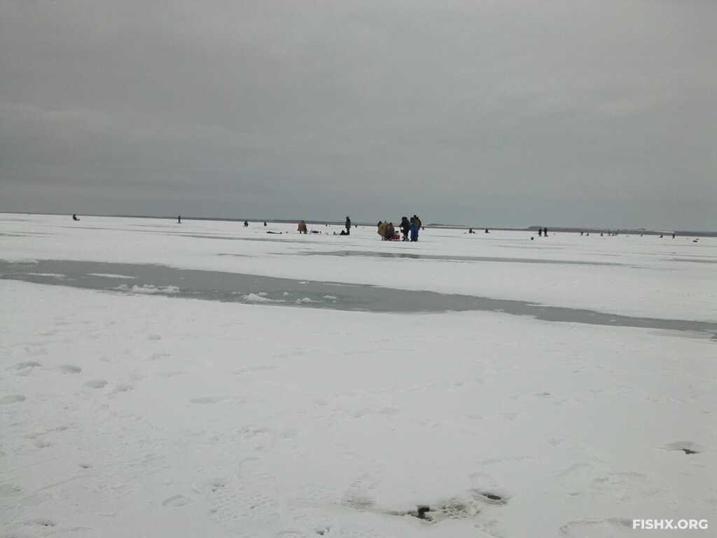 Ловля тарани на Горьком лимане в январе