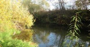Ловля щуки на кренк на малой реке