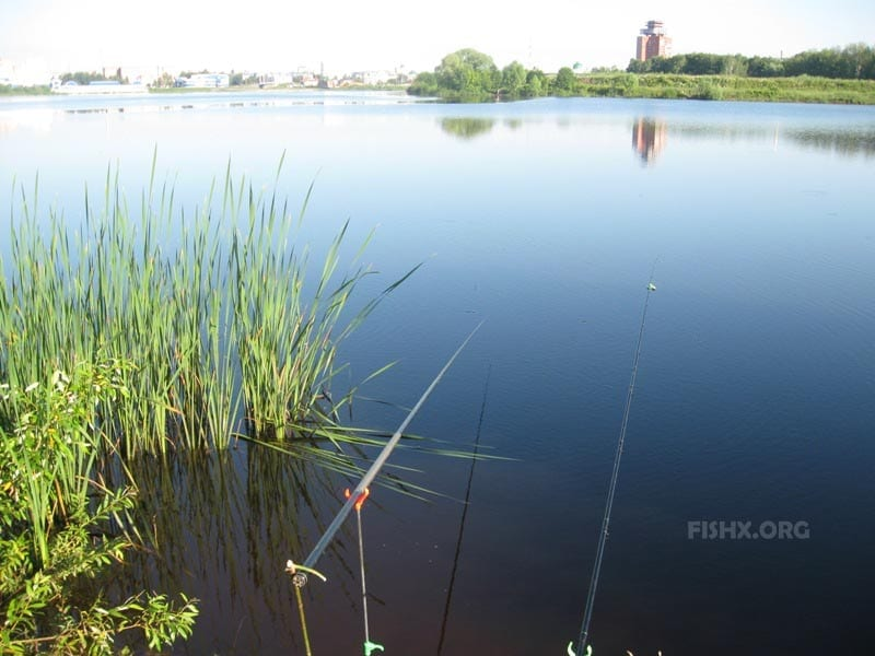 Рыбалка на Малой Кокшаге