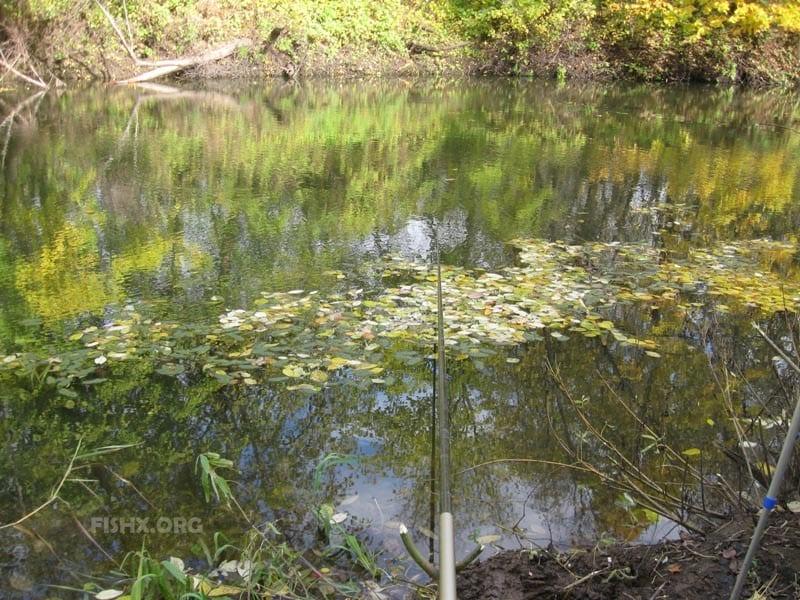 Ловля на малой реке осенью