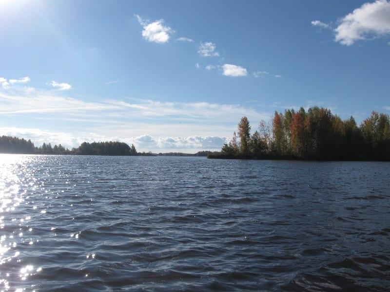 Выбор места ловли судака осенью