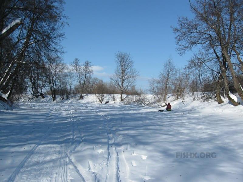 Малая Кокшага. Дубовка зимой