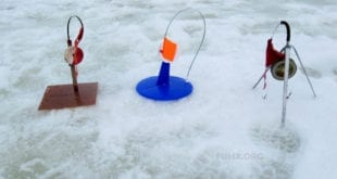 Выбор зимней жерлицы