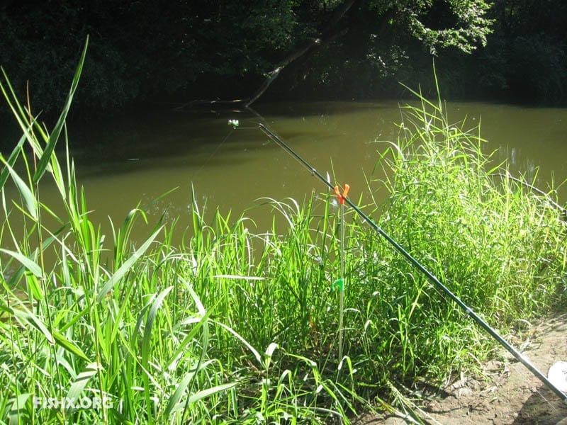 Лещ на малой реке в конце лета