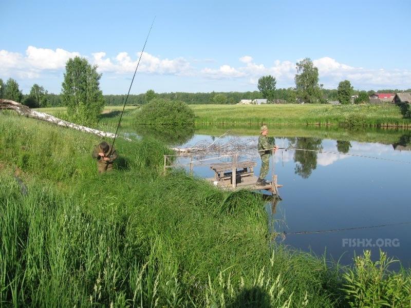 Живописный пруд