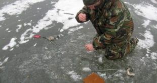 Вытягиваю щуку из-подо льда