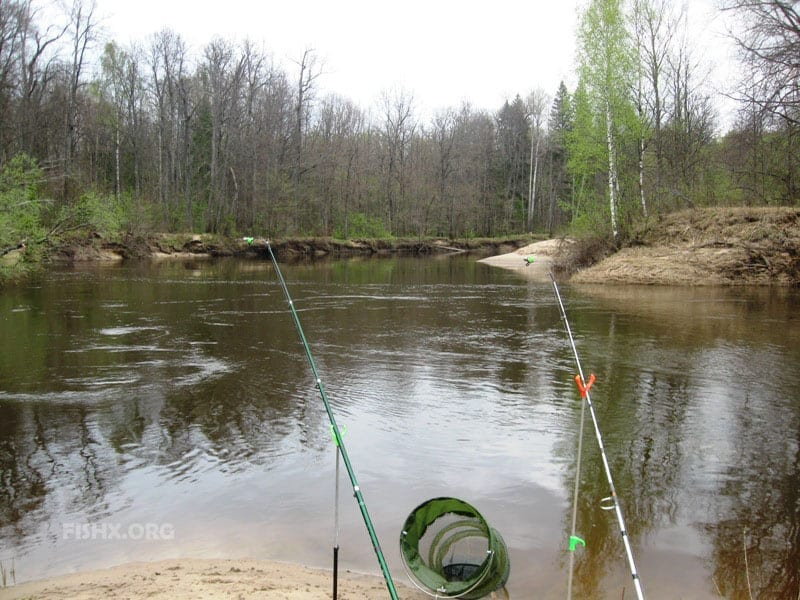 отчёт о рыбалке перед Днём Победы