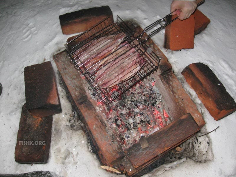 Приготовление скумбрии на углях