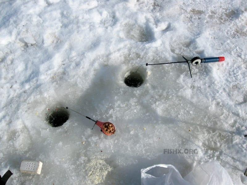 Уклейка в марте со льда